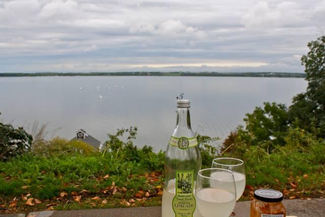 geneva lake picnic